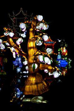 Lanternes au Jardin Botanique de Montréal  par Marie-Alice Art, Gardens, Chinese Lanterns, Art Background, Kunst, Performing Arts