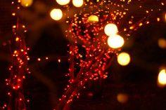 Christmas Orange Spakled Lights