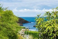 Jasmine Cottage is a charming two bed cottage set in the valley of Port Isaac. The harbour beach is a walk with waterfront shops and restaurants. Port Isaac, Harbor Beach, Jasmine, Golf Courses, England, Cottage, Cabin, Cottages, United Kingdom