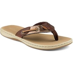 61d50a4fee93d These look really comfy Women s Seafish Metallic Sandal - Sandals  amp  Flip  Flops
