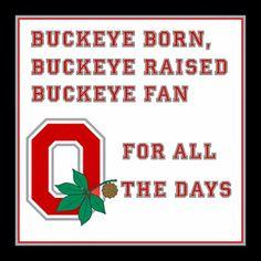 Wallpaper of OSU Wallpaper for fans of Ohio State Football 28702258 Ohio State Buckeyes, Buckeyes Football, College Football Teams, Ohio State University, Fairborn Ohio, Alabama Football, American Football, Ohio State Football Wallpaper, Ohio State Wallpaper