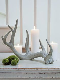 Looking for all the world as if they've been discovered in a far-off Swedish forest, our collection of resin antlers are sculptural, textural and quintessentially Scandinavian.