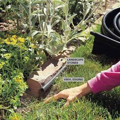 DIY Tip of the Day: Hide Vinyl Edging. Nothing beats vinyl edging for keeping weeds out of your flowerbed. It's inexpensive, flexible, durable and widely available. But it's not pretty. For a more appealing border, install the vinyl edging, then place landscape stones or bricks along its inside edge. The vinyl keeps the grass out and the casual observer will notice the stones, not the black strip in front.