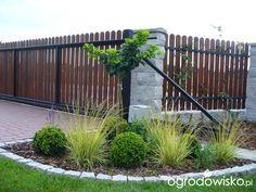 Forum ogrodnicze - Ogrodowisko Backyard Fences, Yard Landscaping, Front Garden Landscape, Fencing Material, Privacy Fences, Garden Inspiration, Garden Design, Deco, Patio
