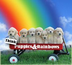 puppy dogs n rainbows | Just got back from taking my mom to the oncologist -- she's cancer ...