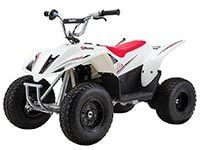 Razor 500 DLX Dirt Quad