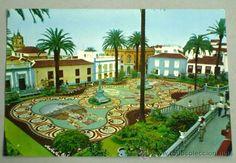 La Orotava Tenerife Alfombra hecha con piedras del Teide 1971