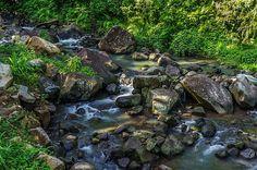 Mambukal by Lik Batonboot Visayas, Hdr Photography, Mountain Resort, Philippines, Wall Art, Photos, Travel, Pictures, Viajes