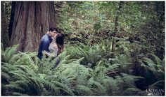 Vancouver's Stanley Park Wedding Photography