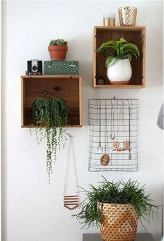 Een lade aan de muur voor planten