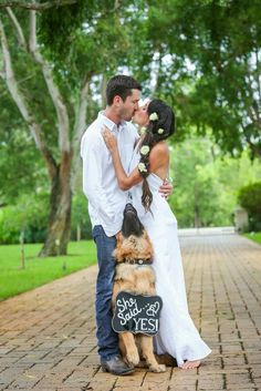 German shepherd, she said yes, engagement photo