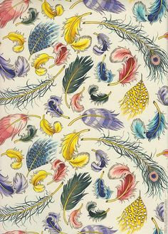 Italian, Feathers Paper by Rossi