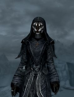 27 Best khajiit images in 2014 | Skyrim, Elder scrolls