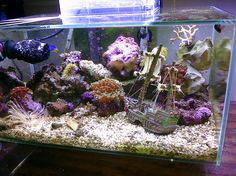 Fluval Aquariums: Nano Fish Tanks - Marine setup with a sunken ship