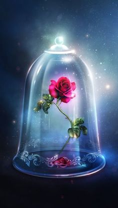 Rose in the glass bell jar from Beauty and the Beast - . -Enchanted Rose in the glass bell jar from Beauty and the Beast - .