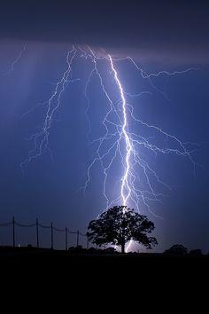 "lightning strike tree | Lightning Strike Behind Tree"" © Mark Van Scyoc"