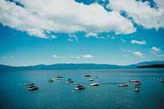 Lake Tahoe Wedding at West Shore Cafe from Annie X Photographie Nevada, Wedding Locations, Wedding Venues, Wedding Tips, Wedding Photos, Lakes In California, Happy Married Life, Snow Pictures, Lake Tahoe Weddings