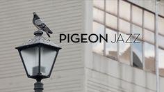 Pigeon Jazz / TBWA Johannesburg
