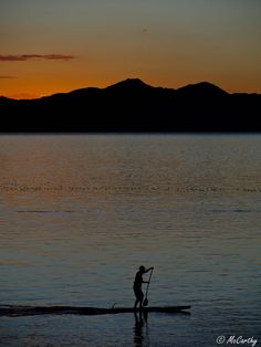 stand up paddle boarding | Tumblr