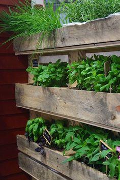 Kasvi-istutuksia kuormalavassa Nordiska Trädgårdar messuilta Tukholmassa parasta puutarhasta blogi puutarhablogi