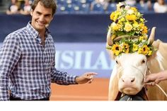 Former Indian cricketer Virender Sehwag got in the 'Tuesday feels' and uploaded three pictures of the Wimbledon 2017 champion Roger Federer with cows. The 19 Grand Slam champion is seen in the pictures milking the cow and standing next to decorated. Roger Federer, Jimmy Connors, Milk The Cow, Wimbledon 2017, Tennis News, Tennis World, Sports Headlines, Cricket News, Smiles And Laughs