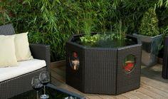 mini bassin pour le balcon avec plantes et poissons