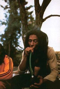 Fotos Do Bob Marley, Arte Bob Marley, Reggae Bob Marley, Image Bob Marley, Bob Marley Legend, Donald Sutherland, Jacqueline Bisset, Michael Bolton, Hugh Laurie