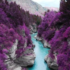 Fancy - Isle of Skye, Scotland