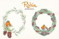 watercolor robin bird clipart - Illustrations - 8