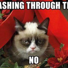 Christmas Meme Wallpaper