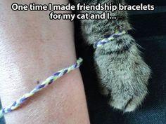 Furrship Bracelets!  I would so do this.