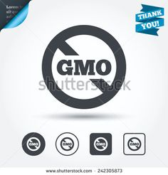 No GMO sign icon. Without Genetically modified food. Stop GMO. Circle and square buttons. Flat design set. Thank you ribbon. Vector