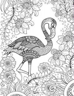 Die 24 Besten Ideen Zu Ausmalbilder Flamingo Ausmalbilder Ausmalen Flamingo