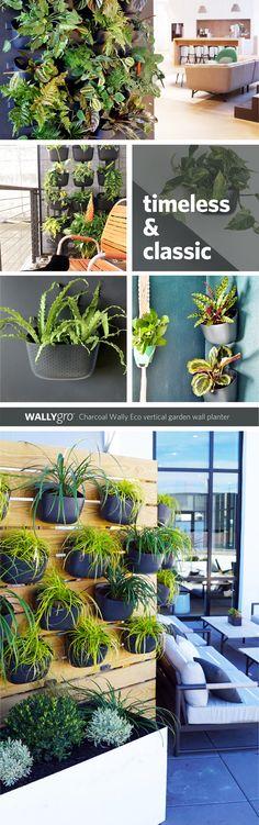 8 Charcoal Wally Eco Wall Planter