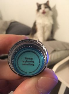 I'm sure those messages under bottlecaps mean nothing, right?