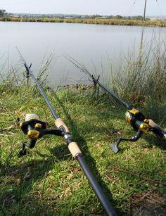 carp fishing 2