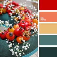 Color Inspiration bright red color of berries deep red emerald green house color selection in Orange Color Schemes, Orange Color Palettes, Color Schemes Colour Palettes, Red Colour Palette, Interior Color Schemes, Paint Color Schemes, Kitchen Colour Schemes, House Color Schemes, Kitchen Colors