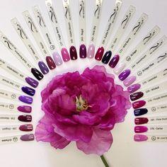 Bio Seaweed Gel Purple Swatches - From L to R (Passion (42), Elegant (196), Maroon (238), Berry Sweet (37), Jewel (18), Star Struck (213), Celebration (209), Dark Romance (174), Mauve It (227), Raisin (143), Sugar Berry (177), Violet Bloom (145), Regal (243), Pink Sky, Funky Fushia (239), Gem (141), Wild Berry (173), Sugar (36), Sweetheart (244), Sugar Plum (29), Lavender (170), wicked (226), Purple Dream (178), Mardi Gras (11), Pixie Dust (185), Cerise (176), LoveStruck (38)
