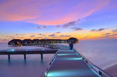 Sunset in the Maldives   photo by Guy Harvey