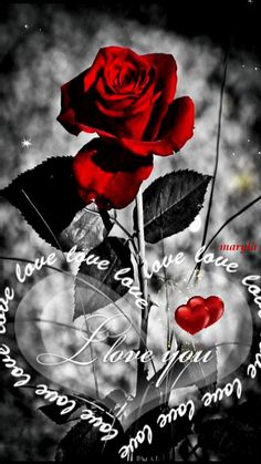 hd love you gif images Love You Gif, Hd Love, Beautiful Love, Love Images, Love Pictures, Coeur Gif, Beau Gif, Beautiful Flowers Wallpapers, Romantic Pictures