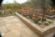ottosen entry garden Desert Oasis, Sidewalk, Garden, Garten, Side Walkway, Lawn And Garden, Walkway, Gardens, Gardening