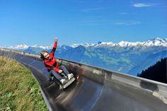 Summer Toboggan Run upon Fräkmüntegg - Switzerland. How amazing would this be?!