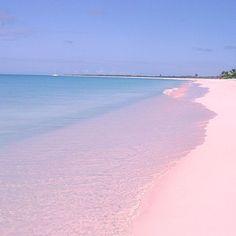 世界に一か所!ピンクの砂浜が可愛すぎるピンクサンド・ビーチ | marry[マリー]
