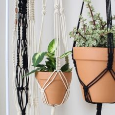 Saturday, January 28, 2017 - $40: Join artist Amy Guerrero and learn the basic knots of macrame and use them to make their own plant hanger! Bring your own pot if you want to make your hanger a certain size