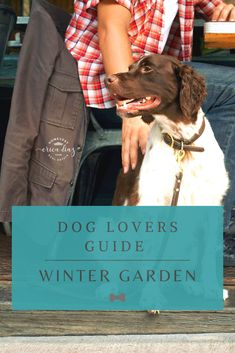 With more and more people moving to Winter Garden, comes more DOG LOVERS! Lucky for these dogs and their humans, Winter Garden is incredibly DOG friendly. Find out the best places in Winter Garden to take your dog! Winter Garden Restaurant, Restaurants Outdoor Seating, Dog Training Classes, Group Of Dogs, Local Parks, Dog Runs, Dog Park, Central Florida, Freundlich