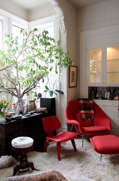 Urban Jungle: 10 Rooms with Lots and Lots of Plants: : : : Love the tree branches : : : : :