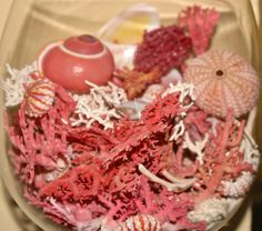 One of my favorite beach cocktails. Mix pink coral, with a dash of white lace coral. Stir. Then add pink sea urchins.  Top with a pink  snail shell.