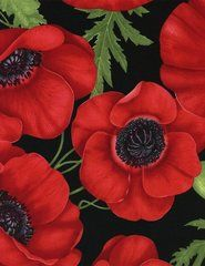 Gorgeous Large Red Poppies, Green Leaves, Black, Timeless Treasures, Chong a Hwang (By 1/2 yd)