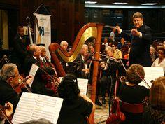 A Rio Camerata, importante orquestra do Rio de Janeiro, apresenta o concerto para oboé com a participação de solistas internacionais na terça-feira, 27, às 19h30, no Sesc São Gonçalo, com entrada gratuita.