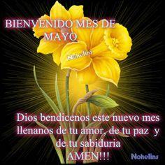 ♥♥FRASES DE MOTIVACION, SUPERACION, AMOR Y MAS♥♥: BIENVENIDO MAYO
